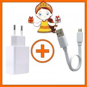 Комплект Сетевое зарядное устройство 5V 2A (EU) + Кабель USB to microUSB (17см)