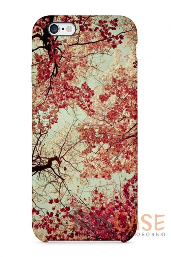 """Фото Листопад Пластиковый чехол RosCase """"Осень"""" для iPhone 6/6s (4.7"""")"""