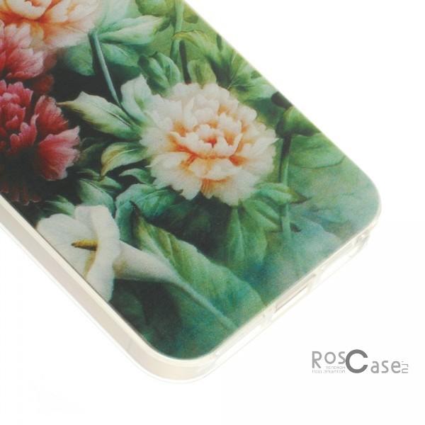 "фото TPU чехол 0.7mm Print ""Пионы и бабочка"" для Apple iPhone 5/5S/5SE"