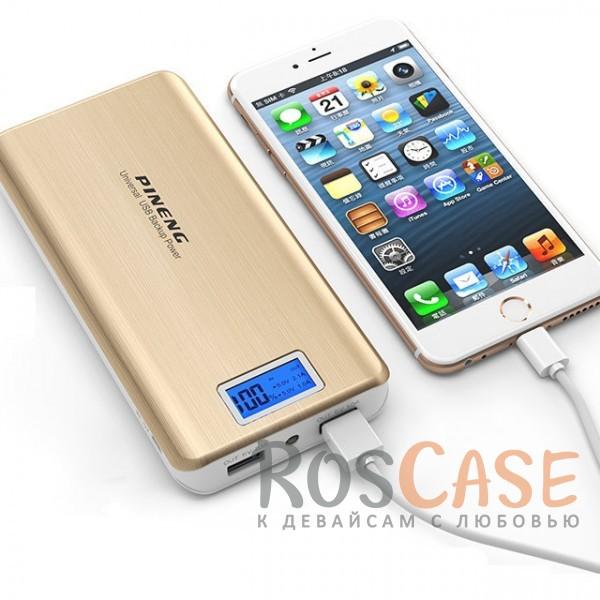 Фотография Золотой Портативное зарядное устройство в противоударном корпусе с ЖК дисплеем и фонариком 20000mAh (2 USB)
