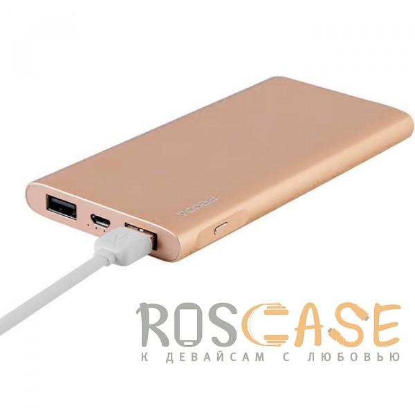 Фото Золотой Remax Proda Kinzy PPP-13 | Портативное зарядное устройство Power Bank в металлическом корпусе на 2 USB (10000 mAh)