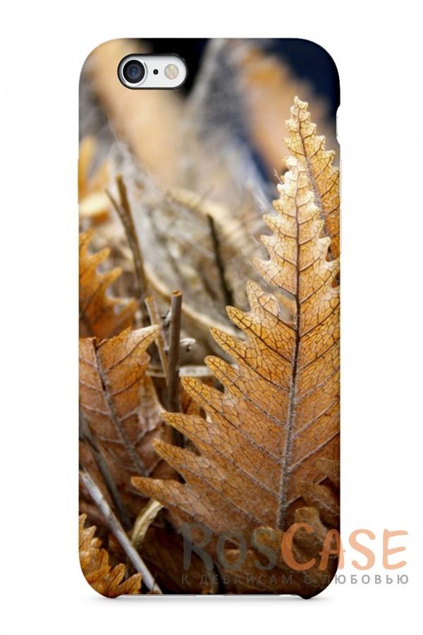 """Фото Гербарий Пластиковый чехол RosCase """"Осень"""" для iPhone 6/6s (4.7"""")"""