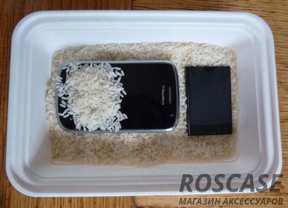 Рис убирает влагу с телефона