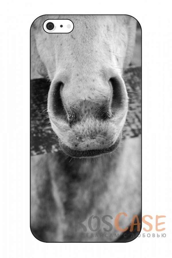 """Фото Лошадь Черно-Белый Снимок Пластиковый чехол RosCase """"Лошади"""" для iPhone 6/6s (4.7"""")"""